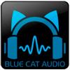 Blue Cat PatchWork