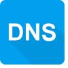 DNS Cache Viewer