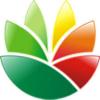 EximiousSoft Logo Designer Pro Portable