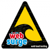 West Wind Web Surge Professional